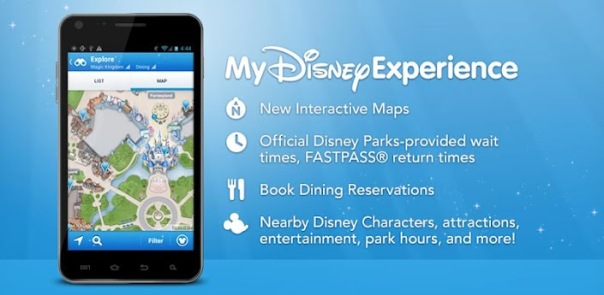 my disney experience details